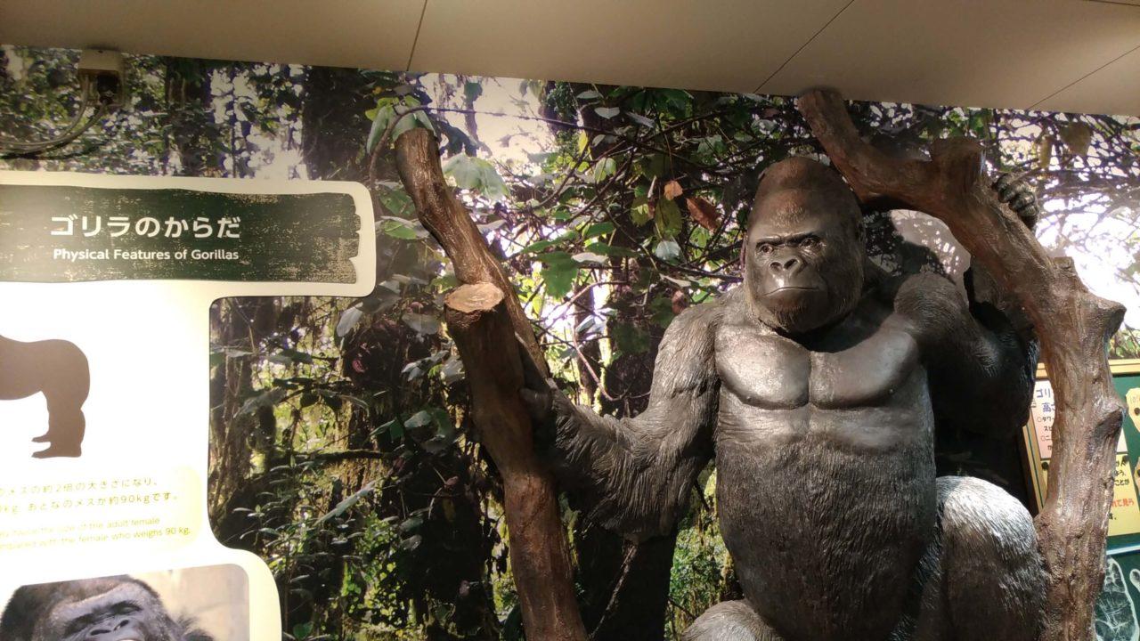 東山動植物園の路駐スポット