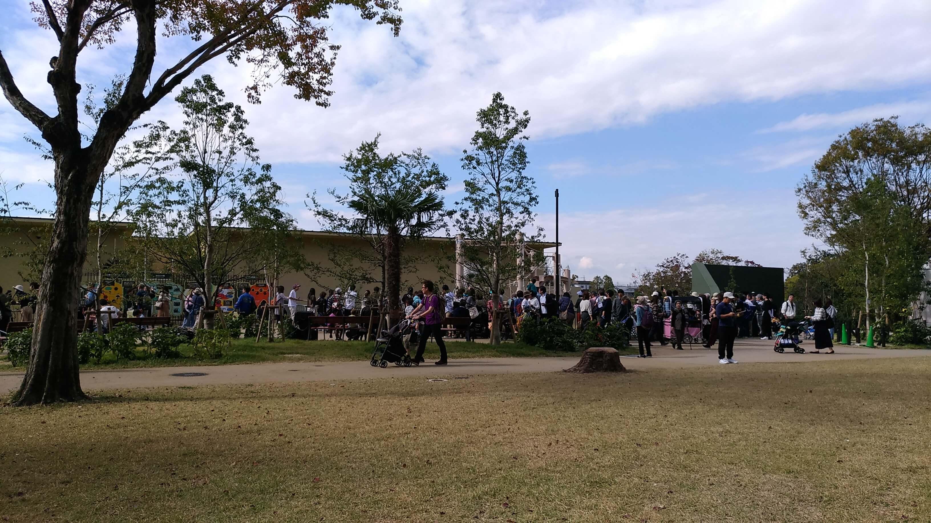 東山動植物園のシャバーニ屋外